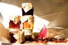 Bottiglie e fagioli della composta fotografie stock libere da diritti