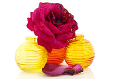 Bottiglie variopinte con una rosa Immagine Stock