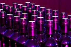 Bottiglie viola Fotografie Stock Libere da Diritti