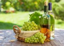 Bottiglie, vite ed uva di vino bianco Fotografie Stock Libere da Diritti