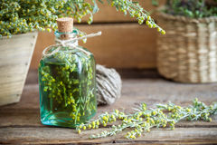 Bottle of absent or tincture of tarragon and absinthe healing herbs. Stock Photo