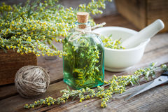 Bottle of absent or tincture of tarragon healthy herbs. Absinthe healing herbs, scissors and mortar. Herbal medicine royalty free stock images