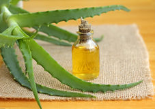Bottle of aloe vera oil Stock Photography