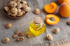 A bottle of apricot kernel oil with fresh ripe apricots Stock Image