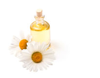 Bottle of aroma oil and chamomiles isolated on white background Stock Images