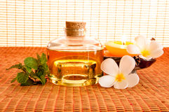 Bottle of aromatic essence oil Royalty Free Stock Photography