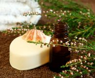 bottle of aromatic oil, lavender and soap Stock Photos