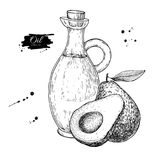 Bottle of avocado oil. Vector Hand drawn illustration. Glass pitcher vintage drawing Royalty Free Stock Images