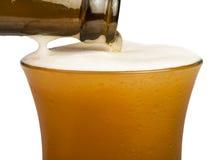 Bottle of beer and beer mug Stock Image
