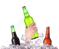 Bottle of beer  breaks the ice Royalty Free Stock Photo