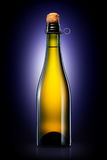 Bottle of beer, cider or champagne isolated on black gradient background Royalty Free Stock Photography
