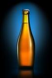 Bottle of beer or cider isolated on dark blue background Stock Image