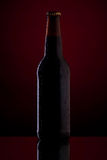 Bottle of beer on dark red background. Bottle of beer with drops on dark red background Stock Image