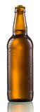 Bottle of beer with drops isolated Stock Image