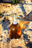 Bottle of beer with a golden sawdust. Fresh bottle of beer in the sawdust in the sun Stock Photos