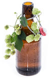 Bottle of Beer with Hops on white Royalty Free Stock Photo