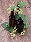Bottle of Beer with Hops on wood Stock Photos