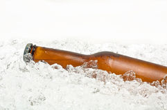 Bottle of beer on ice. Bottle of cold beer resting in crushed ice, side view, against white Royalty Free Stock Photo