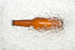 Bottle of beer on ice. Bottle of cold beer resting in crushed ice, with bubble appearing like an alien's head Royalty Free Stock Photos