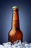 Bottle of beer with ice Royalty Free Stock Photos