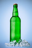 Bottle of beer with ice Stock Images