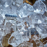 Bottle of beer is in ice Royalty Free Stock Images