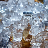 Bottle of beer is in ice Stock Photos