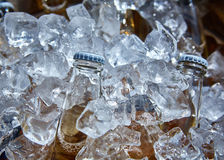 Bottle of beer is in ice Royalty Free Stock Photography