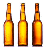 Bottle beer isolated Royalty Free Stock Photo