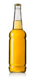 Bottle of beer Stock Images
