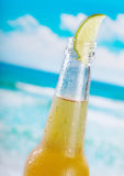 Bottle of beer with lime Royalty Free Stock Images