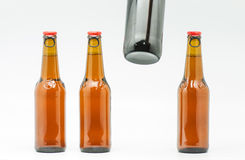 Bottle of beer 10 Royalty Free Stock Photos