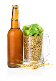 Bottle of beer, Mug of barley and hops, Wheat ears. Brown bottle of beer, Mug full of barley and hops, Wheat ears  on white background Stock Photography