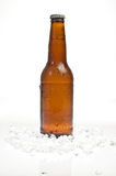 Bottle of beer standing in ice. Bottle of beer standing in some crushed ice Royalty Free Stock Images