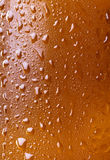 Bottle of beer with water drops Royalty Free Stock Photos