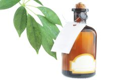 Bottle with body oil  and leaves. Bottle with body oil and fresh green leaves Stock Photography