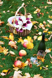 Bottle of brandy, glass, apples and bouquet Stock Photos