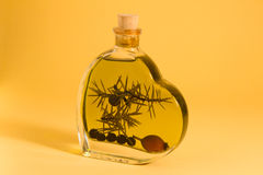 Bottle with brandy. And juniper berries Stock Photography