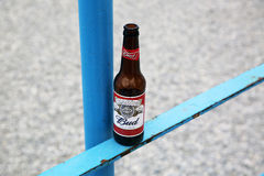 Bottle of Budweiser Beer Royalty Free Stock Photo