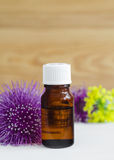 Bottle of burdock extract (oil, tincture, infusion) stock image