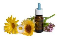 Bottle with calendula, chamomile and mint flowers Stock Image