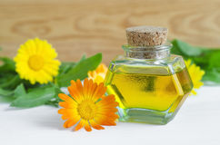 Bottle of calendula oil (Pot marigold extract, tincture, infusion) Stock Images