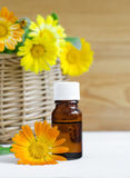 Bottle of calendula oil (Pot marigold extract, tincture, infusion) Stock Photography