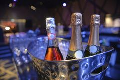Bottle of champagne in bucket of ice. Alcoholic beverages at a wedding Royalty Free Stock Photos