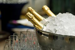 Champagne in bucket with ice. Bottle of champagne in bucket of ice Royalty Free Stock Photo