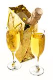 Bottle of a champagne in celebratory packing Royalty Free Stock Images