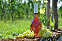 Bottle of champagne and grapes Royalty Free Stock Image