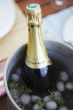 Bottle of Champagne in an ice bucket Stock Photos