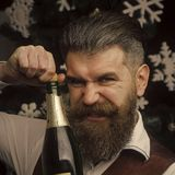Bottle with champagne. santa claus man celebrating, alcohol. Winter holiday and xmas. Party celebration and drink. Christmas man with beard on angry face open Stock Photography