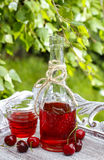 Bottle of cherry juice in the garden Royalty Free Stock Photos